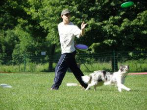 Pasji šport – Frizbi